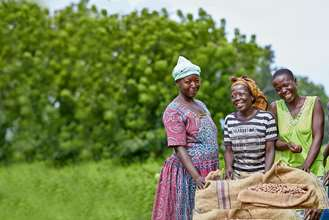 A group of women that are part of a shea enterprise group standing around bags of shea nuts they have collected and smiling and laughing.