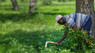 A man in northern Ghana tending to his land.