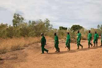 Forest guards walking in a line into the forest.