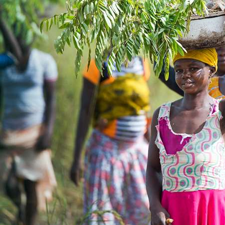 Women in northern Ghana walking in a line with tree saplings in buckets on their heads before planting them. Photo credit: Rowan Griffiths, Daily Mirror.