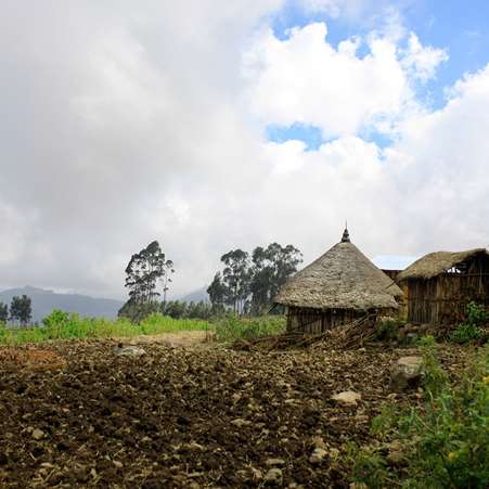 Landscape of a village that Tree Aid is working in, in Ethiopia.
