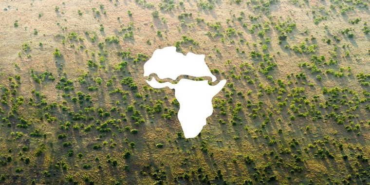 The Great Green Wall is a movement for change across Africa