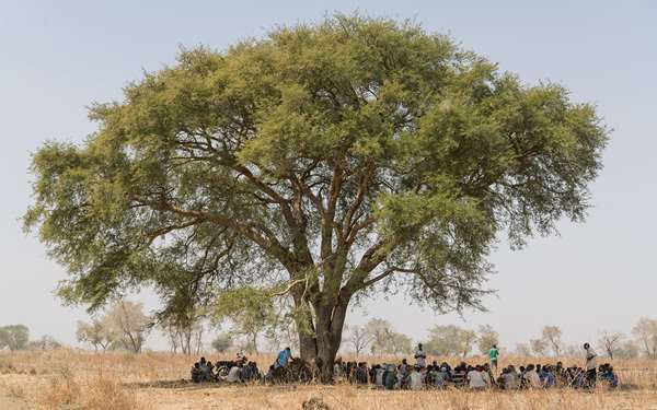 Community members gathered underneath a huge tree in their village in Ethiopia to get shelter from the sun.