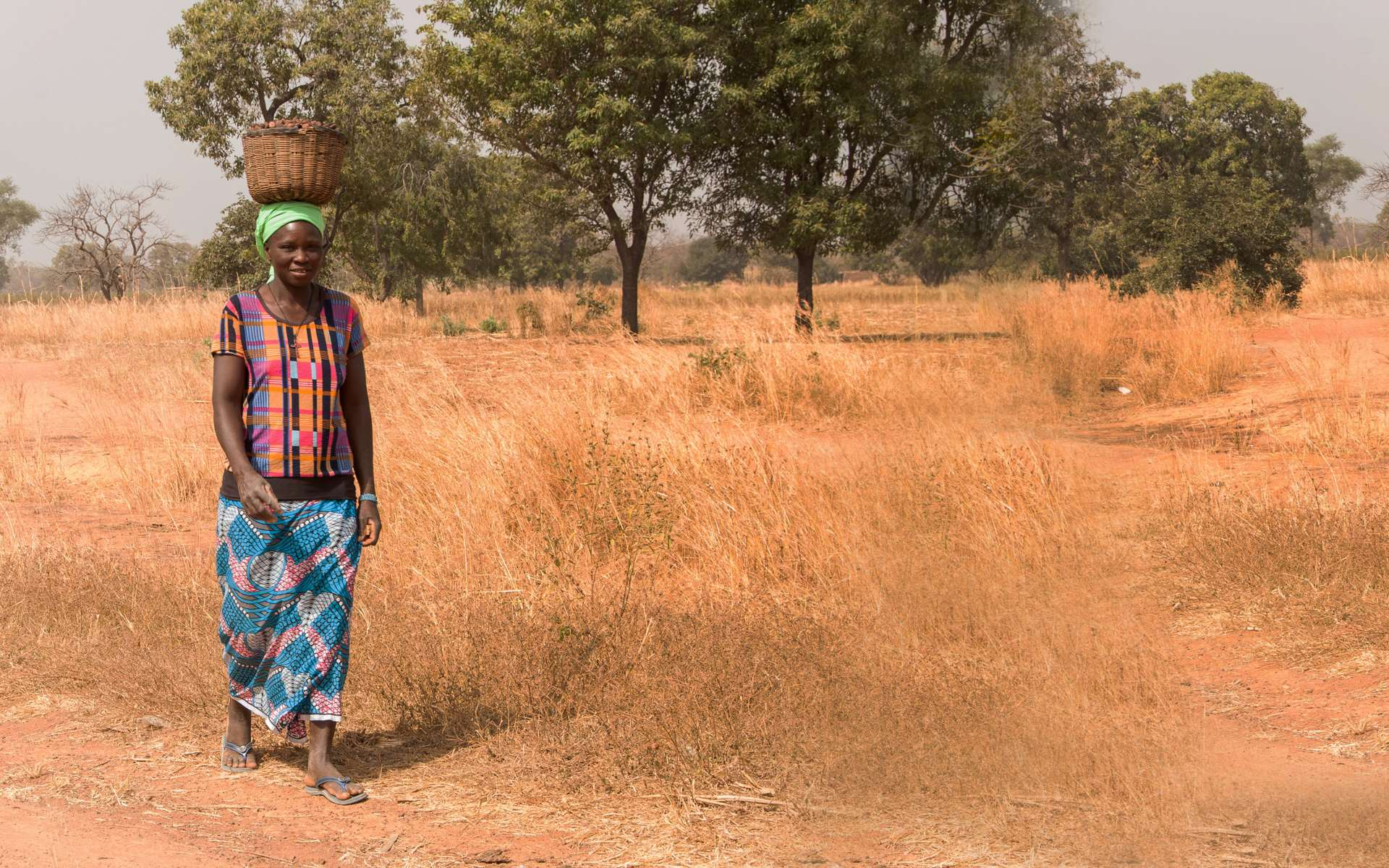 Sabine, a woman in Mali on Tree Aid's strengthening forest management project, walking through a degraded landscape with a bowl of shea nuts on her head.